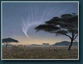 Thumbnail Comet McNaught over Serengeti